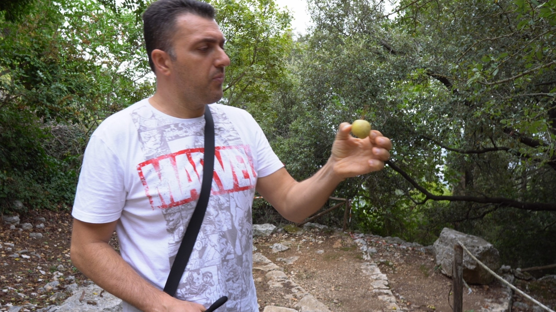 La Puglia tipica - Selva di Fasano BR